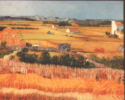 Dagani - Falso VanGogh -HarvestALaCrau