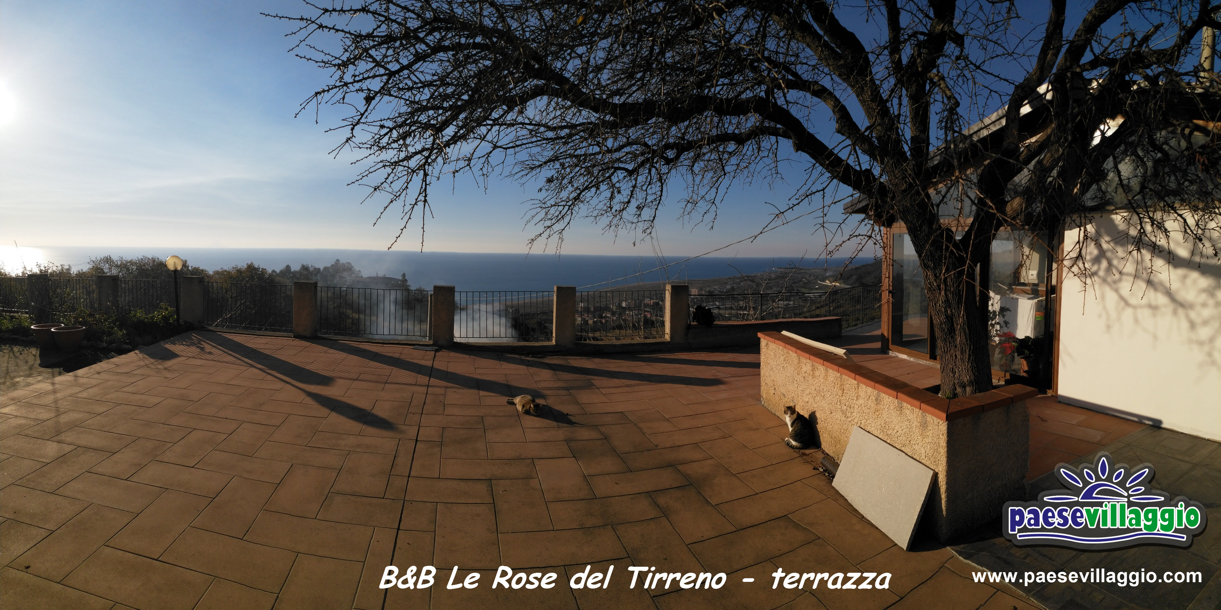 IMG_20180126_154221_B&B_Le_Rose_terrazza_scritta e logo_medium